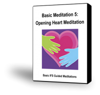 Basic IFS Meditation 5