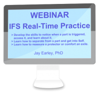WB-006 - IFS Real-Time Practice Webinar