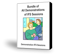 All Demonstrations of IFS Sessions