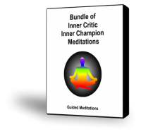 Bundle of Inner Champion Inner Critic