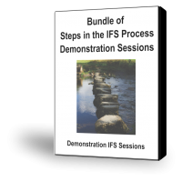 Steps in the IFS Process