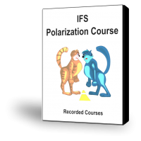 C04-IFS-Polarization-Course