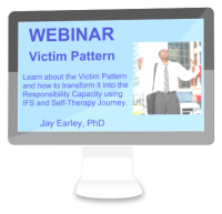 WB-012-Victim-Pattern-Webinar