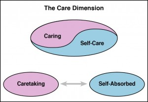 How the Care Dimension Works