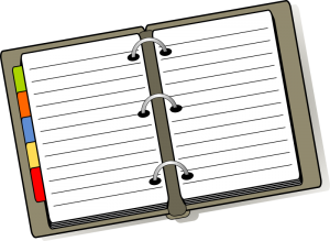 Notebook on IFS sessions